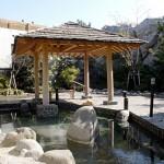 Outdoor bath at Oedo-onsen-monogatari (Image: from homepage)