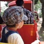 Small Train(Mame-Densha)