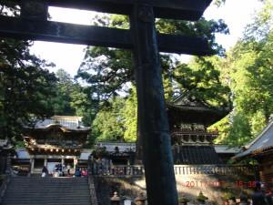 TOSHOGU surine